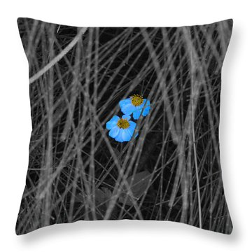 Two Blue Throw Pillow by Douglas Barnard