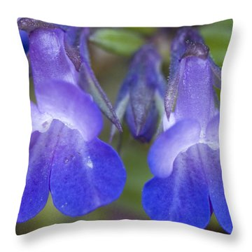 Throw Pillow featuring the photograph Two Blue by Sonya Lang