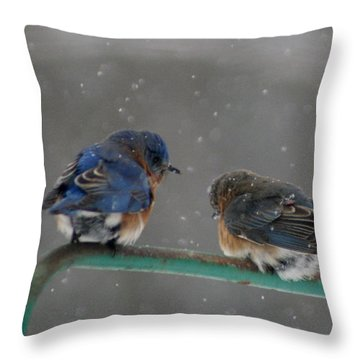 Two Bluebirds Throw Pillow by Lois Lepisto