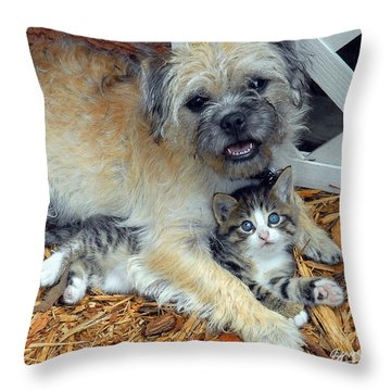 Two Buddies  Throw Pillow by Jeff McJunkin
