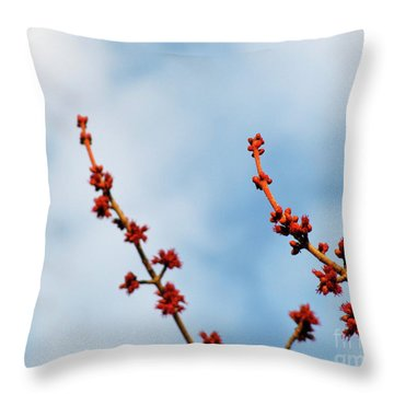 Two Budding Branches Throw Pillow by CML Brown