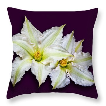 Two Clematis Flowers On Purple Throw Pillow