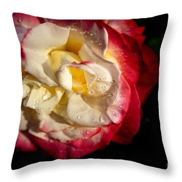 Two Color Rose Throw Pillow by David Millenheft