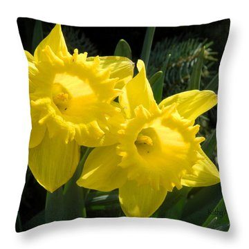 Two Daffodils Throw Pillow by Kathy Barney