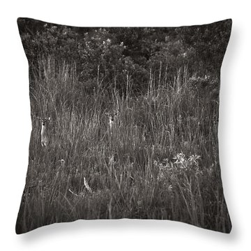 Throw Pillow featuring the photograph Two Deer Hiding by Bradley R Youngberg