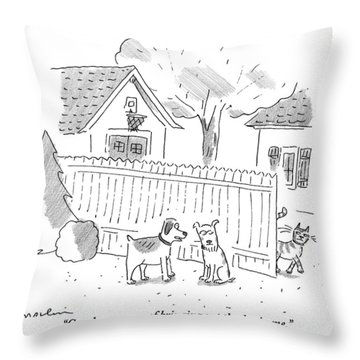 Two Dogs Are Speaking With A Cat Walking Near By Throw Pillow