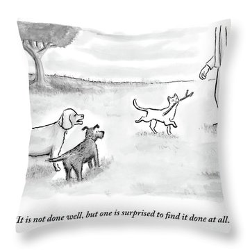 Two Dogs Criticize A Cat Who Has Just Retrieved Throw Pillow