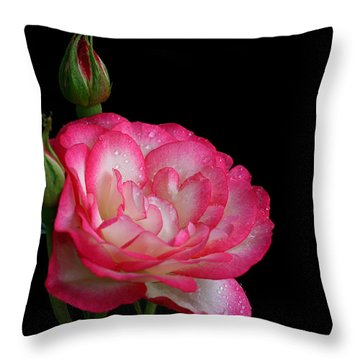 Throw Pillow featuring the photograph Buddies by Doug Norkum