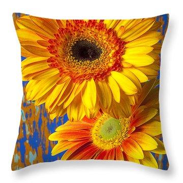 Two Golden Mums Throw Pillow by Garry Gay
