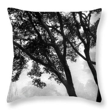Two Heron - Black And White Throw Pillow by Lori Grimmett