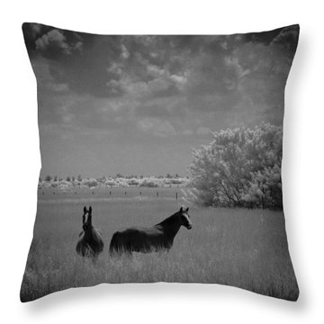 Throw Pillow featuring the photograph Two Horses by Bradley R Youngberg