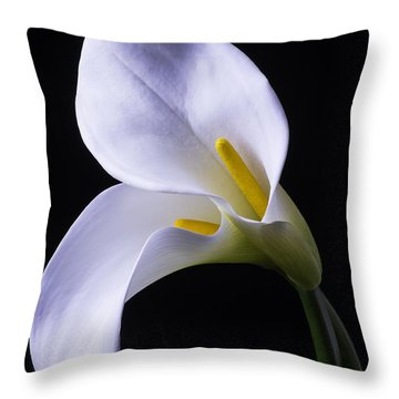 Two In Love Throw Pillow