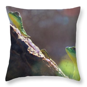 Two In One Throw Pillow