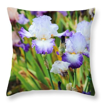 Throw Pillow featuring the photograph Two Iris by Patricia Babbitt
