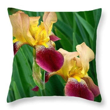 Two Iris Throw Pillow by Rodney Lee Williams