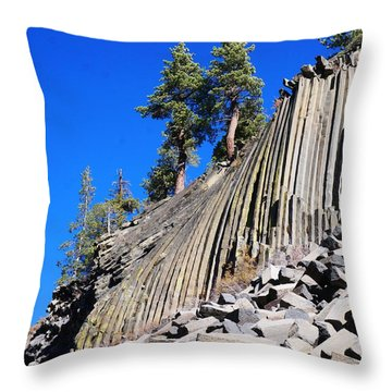 Throw Pillow featuring the photograph Two by Julia Ivanovna Willhite