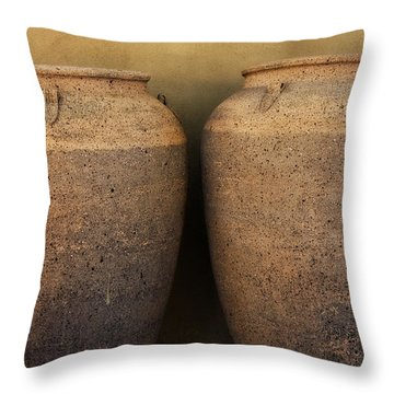 Two Large Garden Urns Throw Pillow