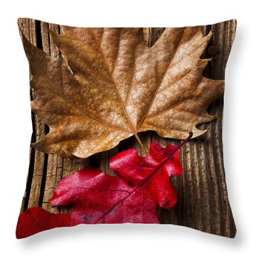 Two Leafs  Throw Pillow by Garry Gay