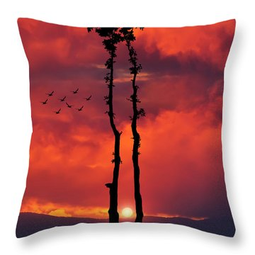 Two Oaks Together In The Field At Sunset Throw Pillow by Bess Hamiti