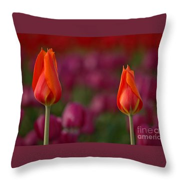 Throw Pillow featuring the photograph Two Of A Kind by Nick  Boren