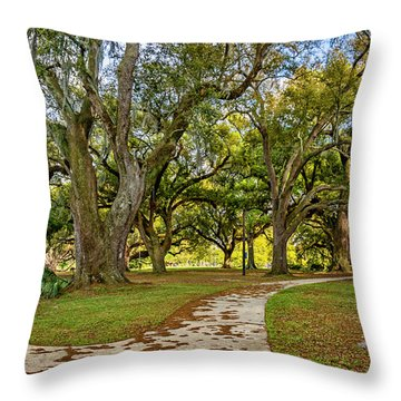 Two Paths Diverged In A Live Oak Wood...  Throw Pillow by Steve Harrington