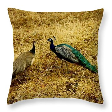Two Peacocks Yaking Throw Pillow
