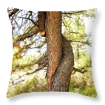 Two Pines Intertwined  Throw Pillow by Deborah Moen