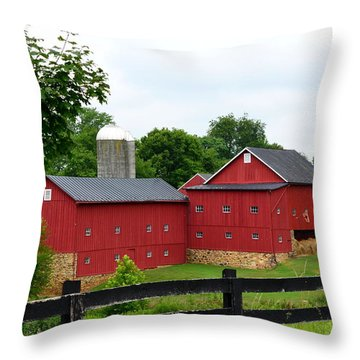 Two Red Barns Throw Pillow