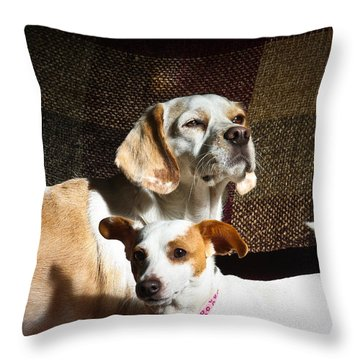 Two Rescues Throw Pillow