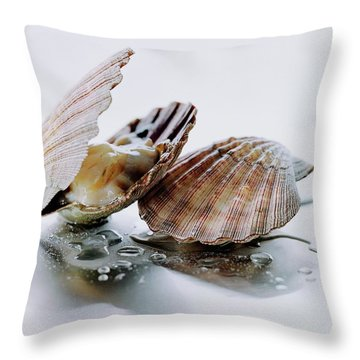 Two Scallops Throw Pillow