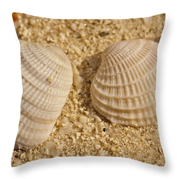 Two Shells Throw Pillow by Adam Romanowicz