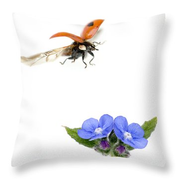 Two Spot Ladybug Throw Pillow by Mark Bowler