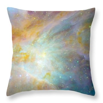Two Sunflowers With Gaseous Nebula Throw Pillow