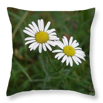 Two To The Sun Throw Pillow