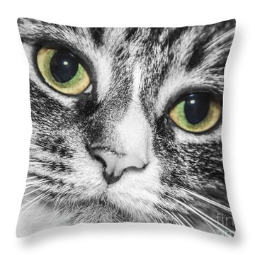 Two Toned Cat Eyes Throw Pillow by Jeannette Hunt