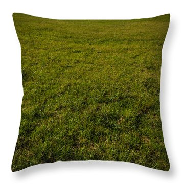 Two Trees And A Leaf Throw Pillow