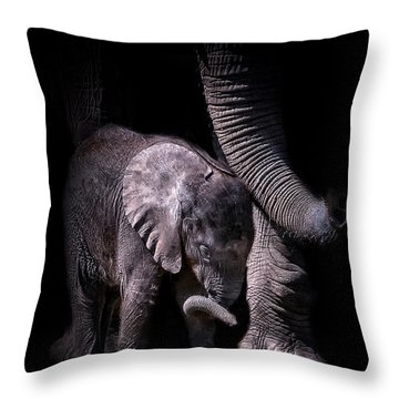 Two Trunks Throw Pillow