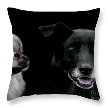 Two Types Of Mutts Throw Pillow by Nola Lee Kelsey