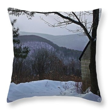 Throw Pillow featuring the photograph Two Valley View by Christian Mattison