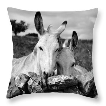 Two White Irish Donkeys Throw Pillow by RicardMN Photography