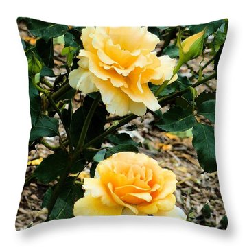 Throw Pillow featuring the photograph Two Yellow Roses by Janette Boyd