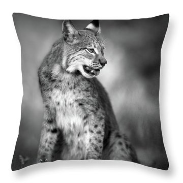 Lynx Throw Pillows