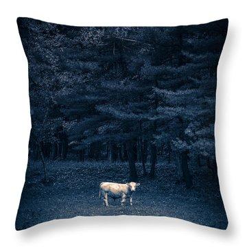 Udder The Moo Night Throw Pillow