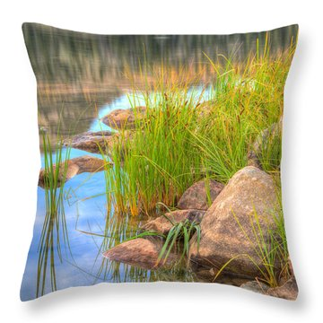 Throw Pillow featuring the photograph Uinta Reflections by Dustin  LeFevre