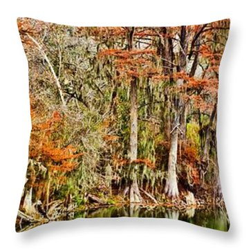 Ultimate Cypress Panoramic Throw Pillow