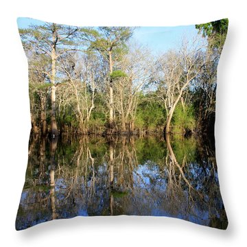 Ultimate Reflection Throw Pillow