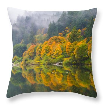 Umpqua Serenity Throw Pillow by Patricia Davidson