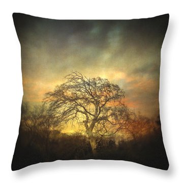 Un Dernier Crepuscule Throw Pillow by Taylan Apukovska