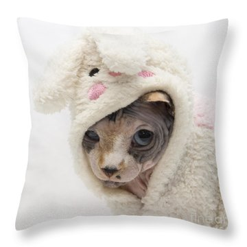 Unamused Throw Pillow by Jeannette Hunt