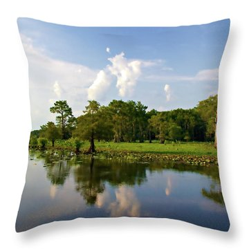 Uncertain Reflection Throw Pillow by Lana Trussell